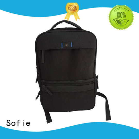 Sofie multi-functional laptop backpack supplier for office