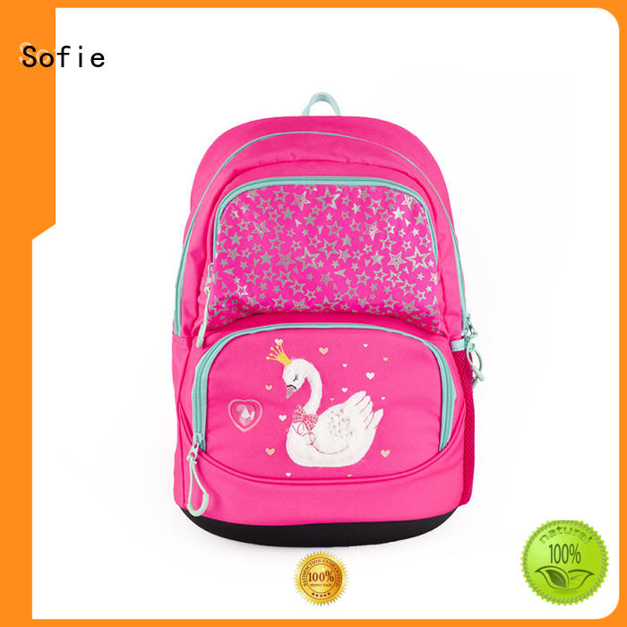 polyester school backpack wholesale for children