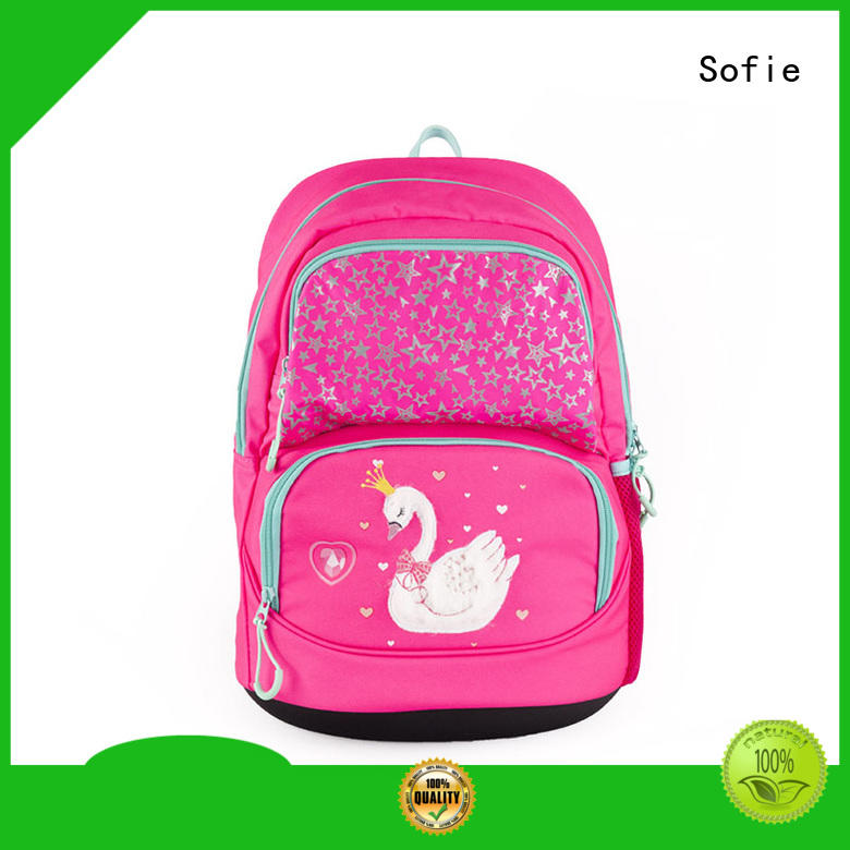 polyester school bags for girls manufacturer for students