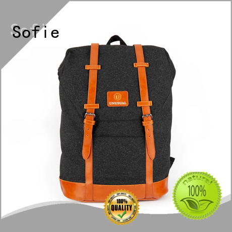 laptop backpack wholesale for business Sofie