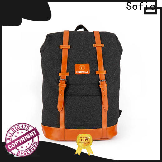 Sofie large capacity canvas backpack supplier for college