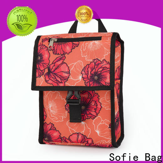 new insulated lunch bags manufacturers for students