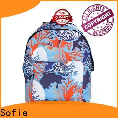 ergonomic shoulder strap students backpack wholesale for packaging