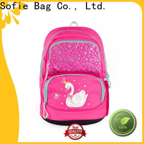 Sofie ergonomic shoulder strap school bags for boys series for students
