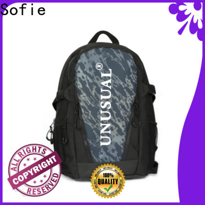 Sofie mini backpack wholesale for college