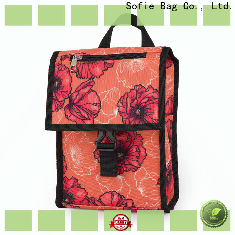 Sofie insulated lunch bags company for students
