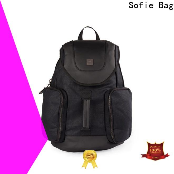Sofie long lasting laptop backpack manufacturer for travel