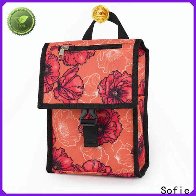 new insulated cooler bags with good price for students