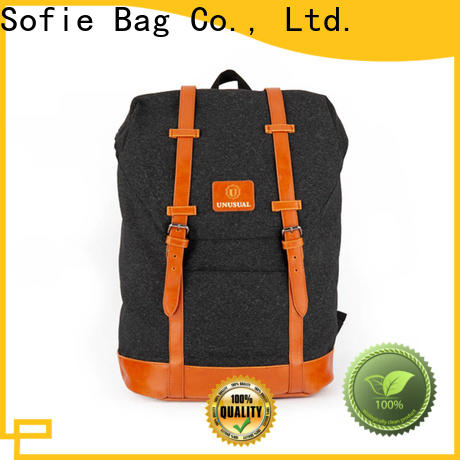 Sofie convenient canvas backpack supplier for school