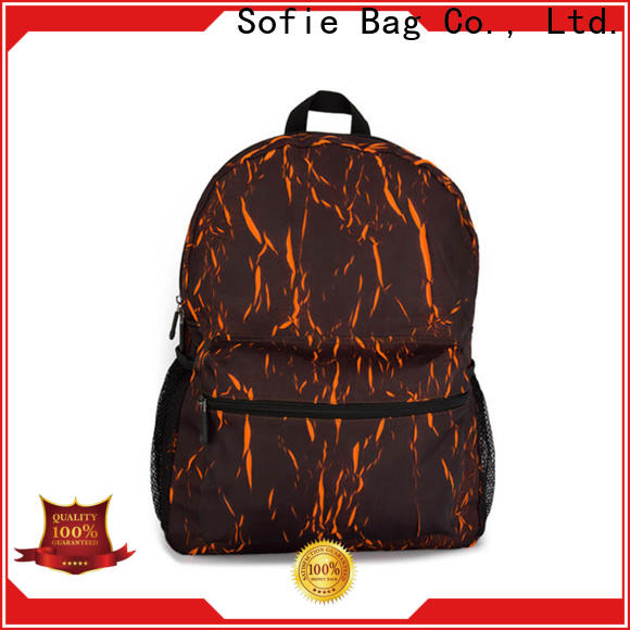 Sofie unique style laptop backpack supplier for school