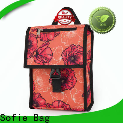Sofie insulated cooler bags manufacturers for packaging