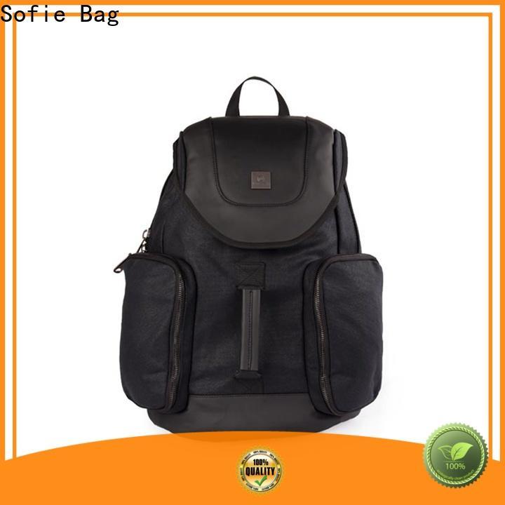 Sofie back pocket backpacks for men customized for travel