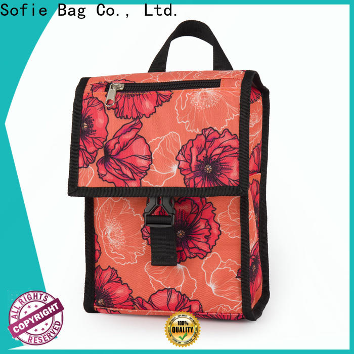 best insulated cooler bags factory for kids