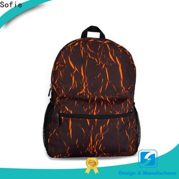 Sofie convenient casual backpack manufacturer for travel