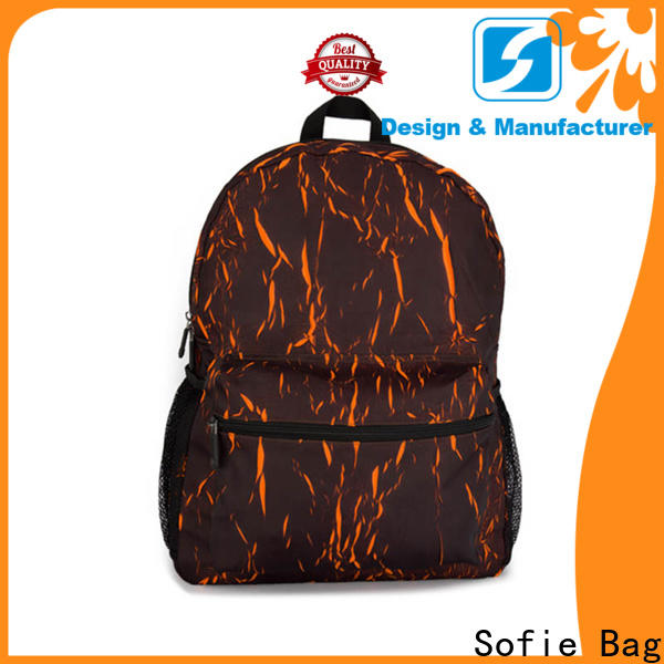 Sofie laptop backpack wholesale for business