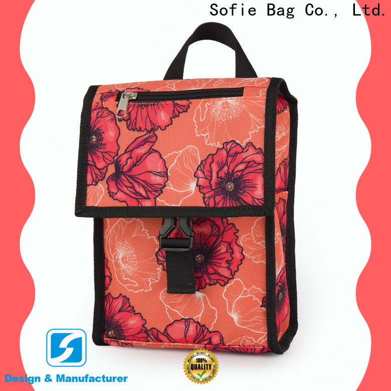 Sofie OEM best insulated lunch bag company for packaging