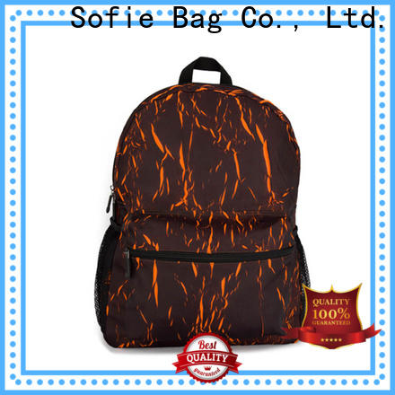 Sofie PU leather handle cool backpacks personalized for college