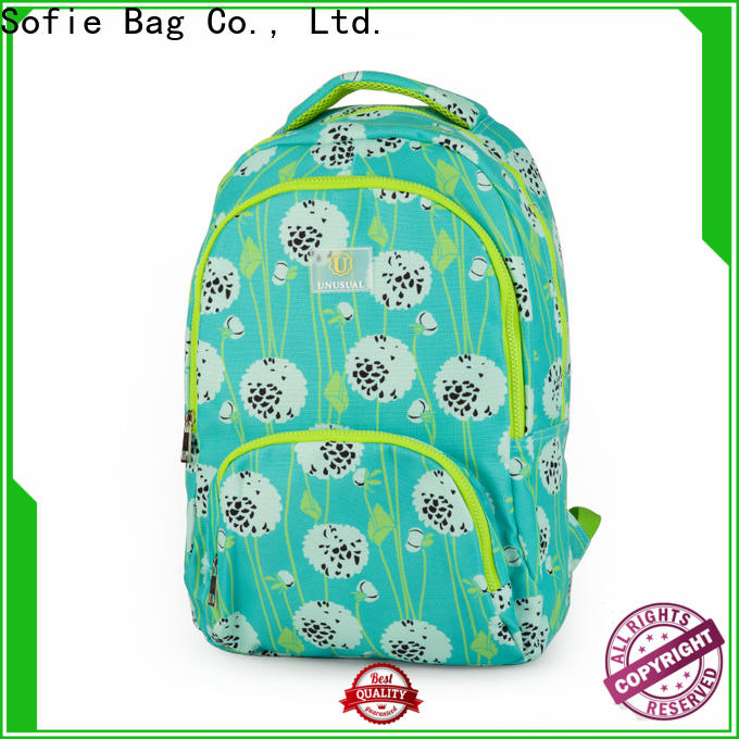 large capacity school bags for boys series for children