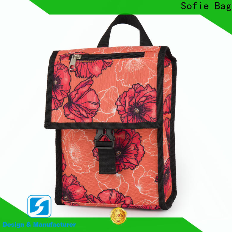 ODM insulated cooler bags company for children