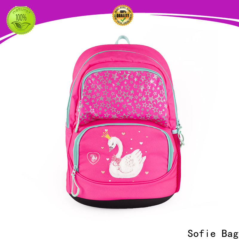 large capacity school bag series for packaging