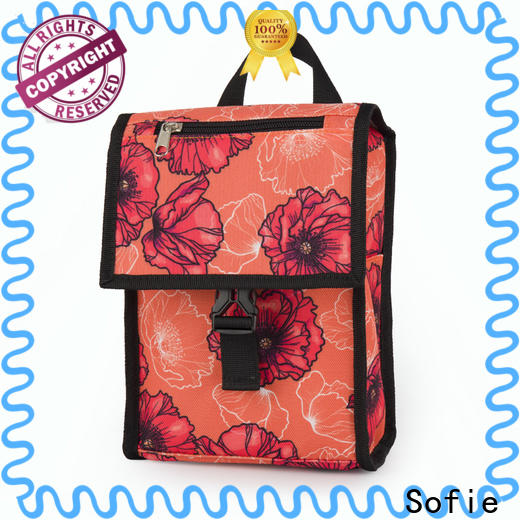 Sofie ODM insulated cooler bags supply for children
