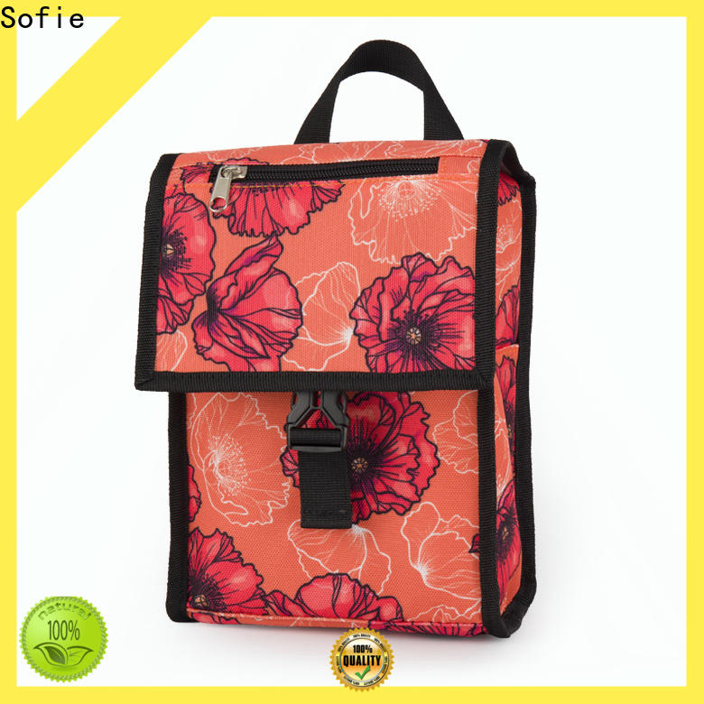 Sofie custom insulated lunch bags factory for packaging