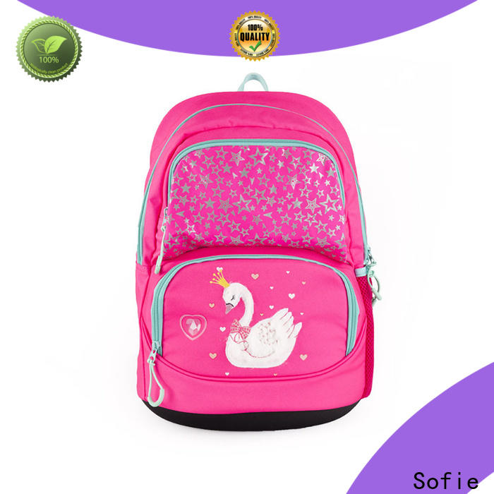 Sofie convenient school bags for boys supplier for children