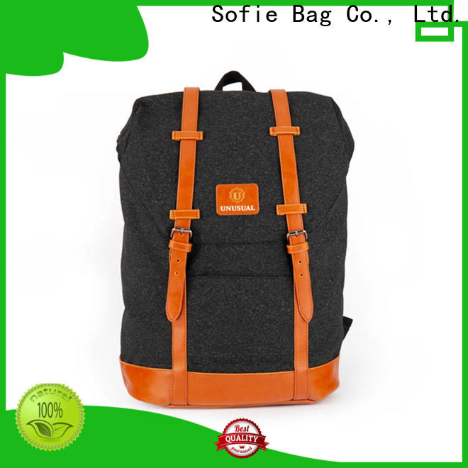 Sofie convenient stylish backpack supplier for travel