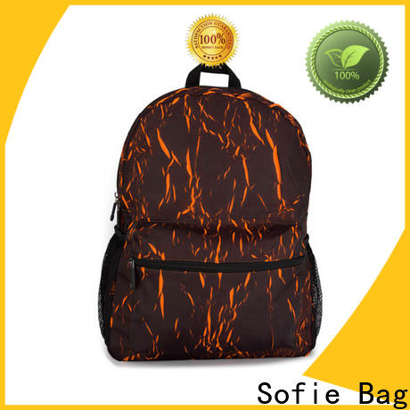 Sofie modern sport backpack wholesale for business