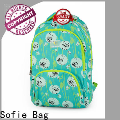 ergonomic shoulder strap school bags for boys customized for students