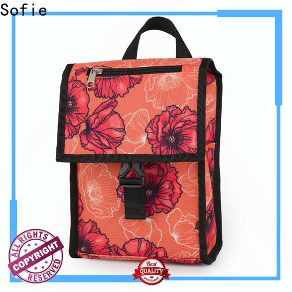 top insulated lunch bags company for kids