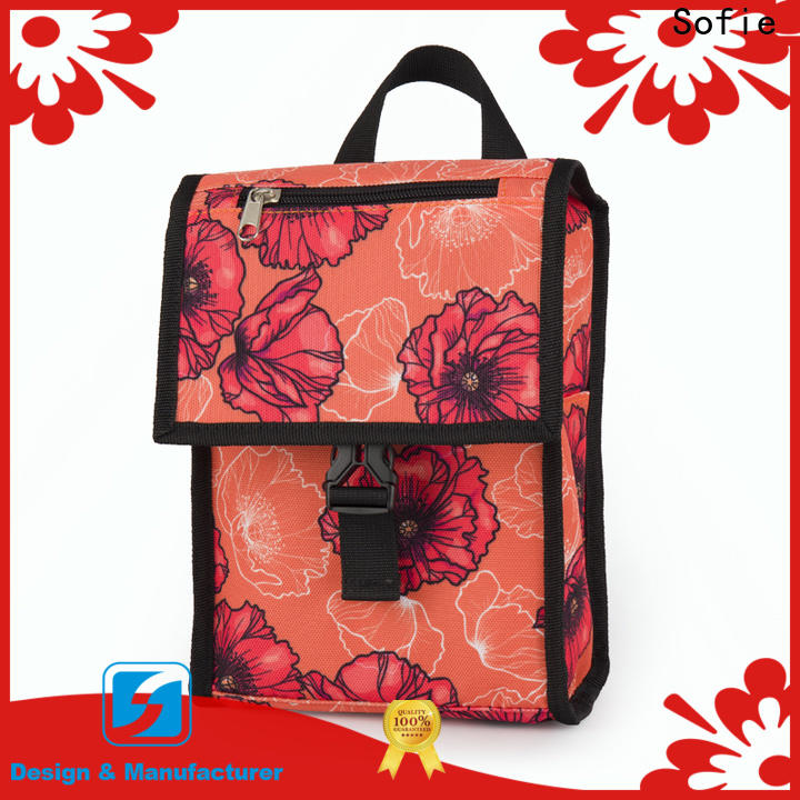 Sofie insulated cooler bags with good price for students
