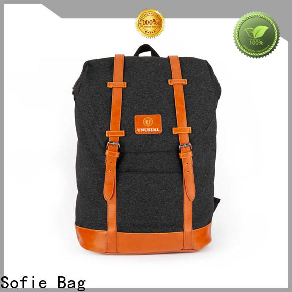 Sofie PU leather handle laptop backpack supplier for college