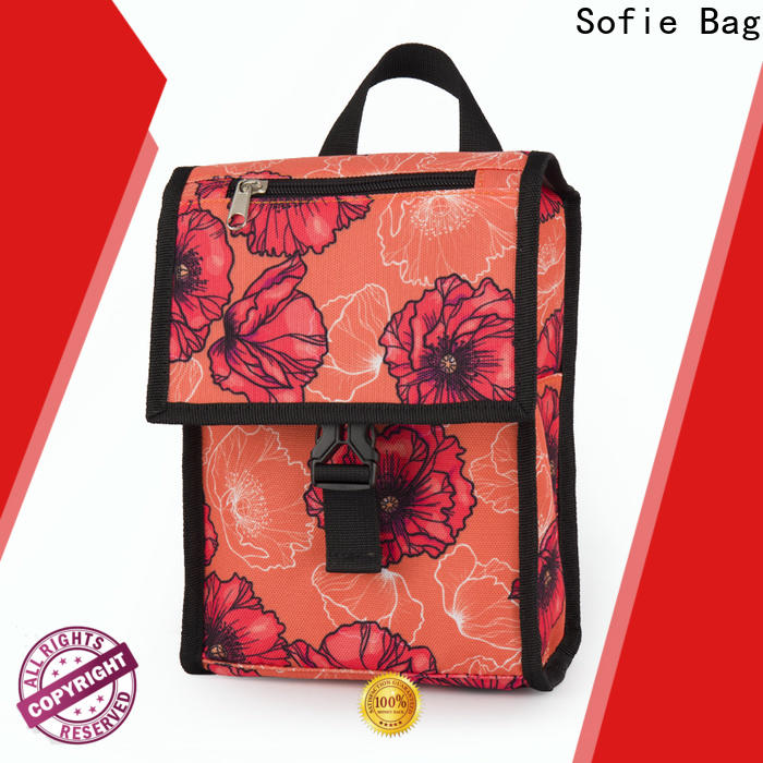 top best insulated lunch bag manufacturers for students