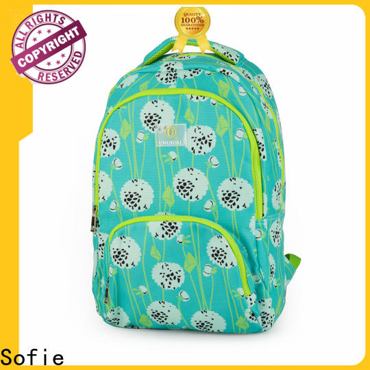 convenient school bag customized for students