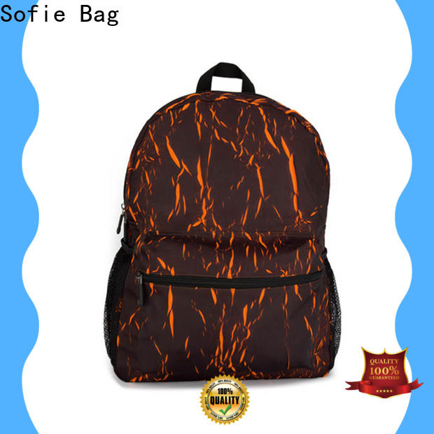Sofie reflective backpack wholesale for college
