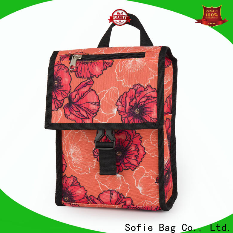 wholesale insulated bag supply for students