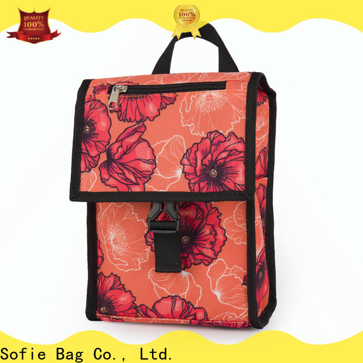Sofie best insulated lunch bag with good price for children