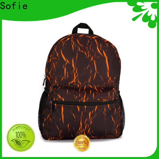 large capacity cool backpacks customized for travel