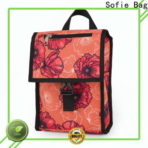 Sofie custom insulated lunch bags supply for children