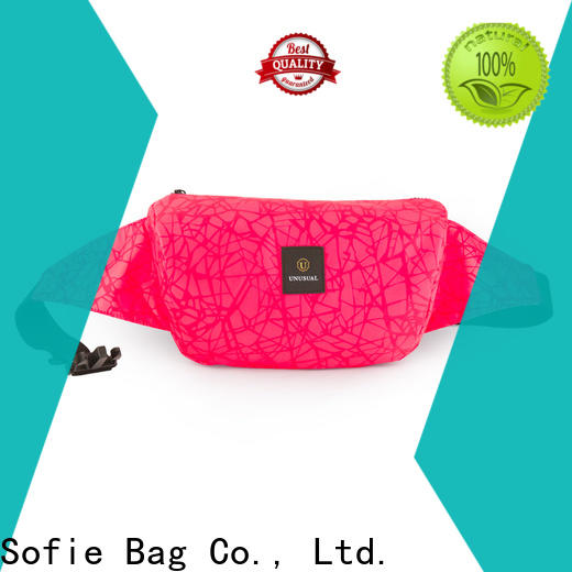 Sofie reflective waist bag for jogging