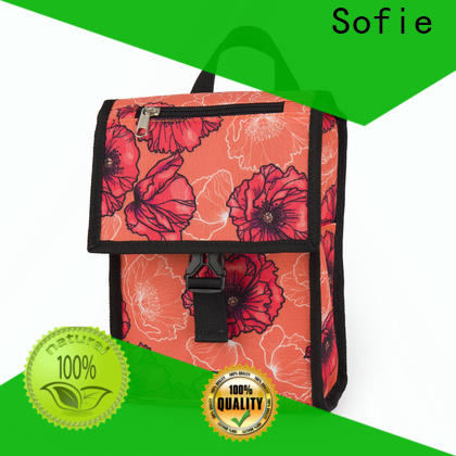 latest insulated lunch bags with good price for students