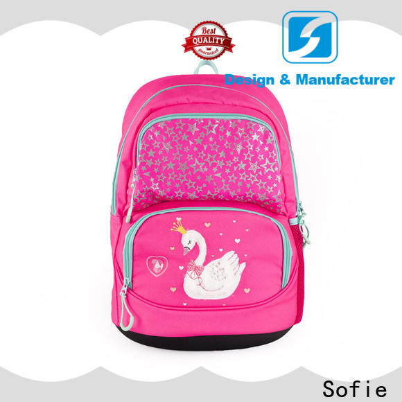 light weight school backpack wholesale for kids