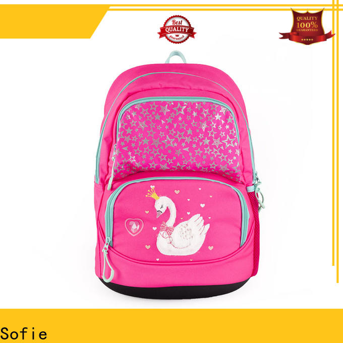 Sofie large capacity school bags for boys wholesale for students