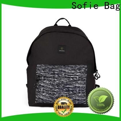 Sofie high quality laptop backpack wholesale for college