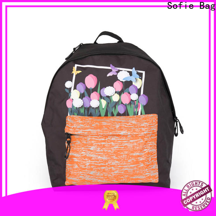 Sofie two pockets school backpack supplier for packaging