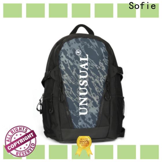 Sofie back pocket laptop backpack customized for travel