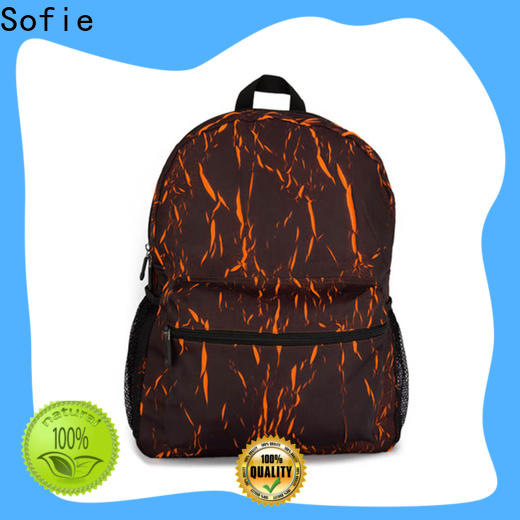 back pocket laptop backpack customized for school