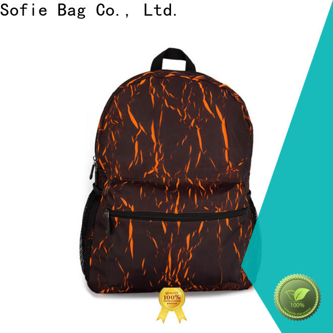 creative laptop backpack customized for school