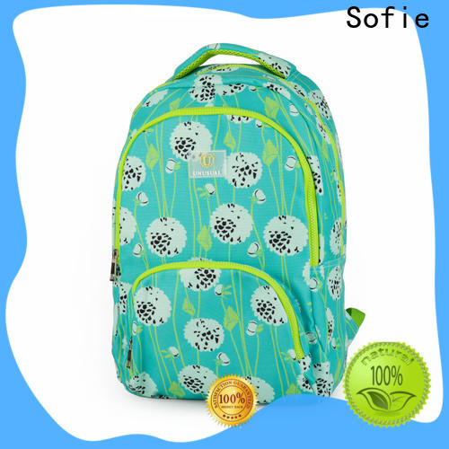 Sofie two pockets students backpack wholesale for students